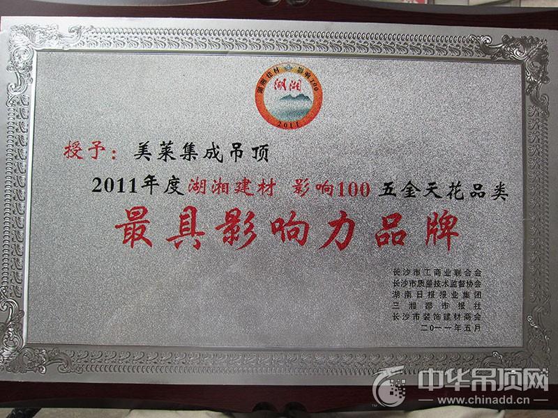 湘乡建材影响100最具影响力品牌