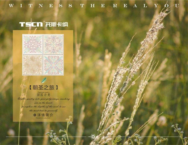 托斯卡纳朝圣系列-朝圣之旅扣板图片