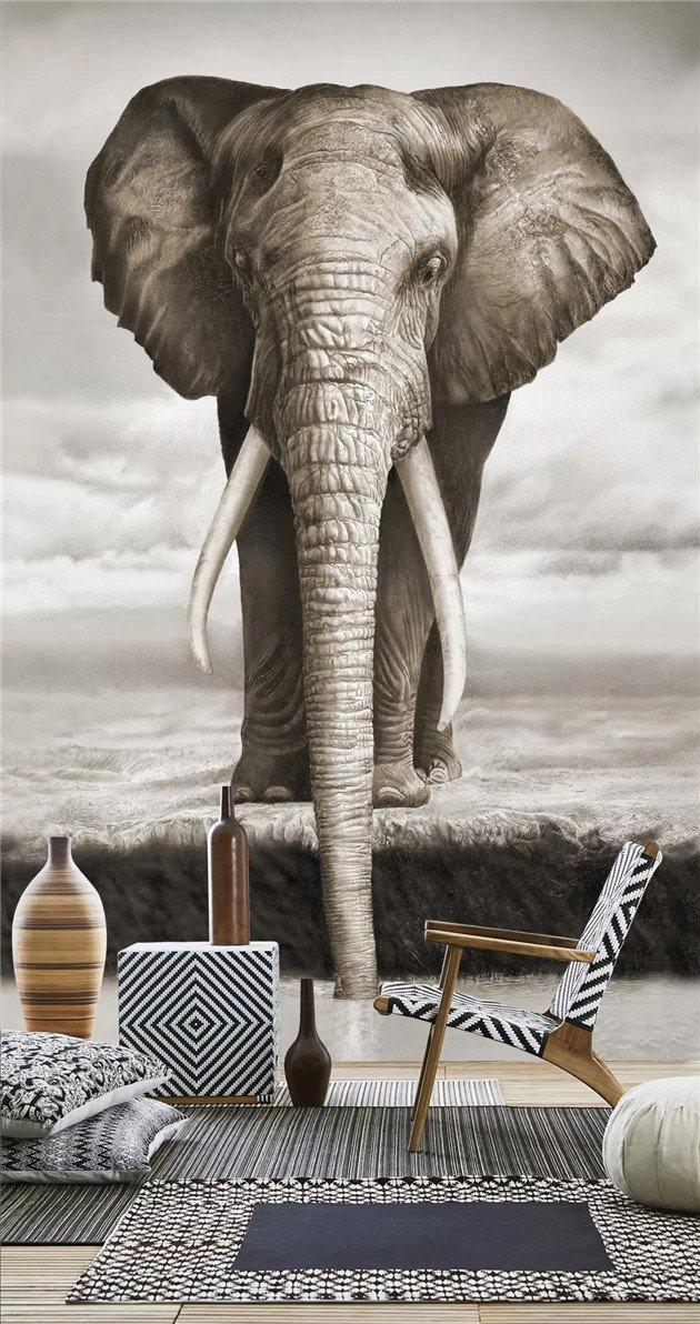 沃莱菲壁布大象《希声》壁纸产品及装修效果图