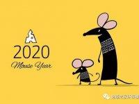 硬核2020!金尊之家装的就是放心!